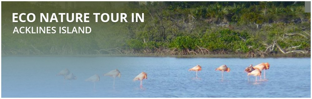 FULL DAY ECO-TOURS