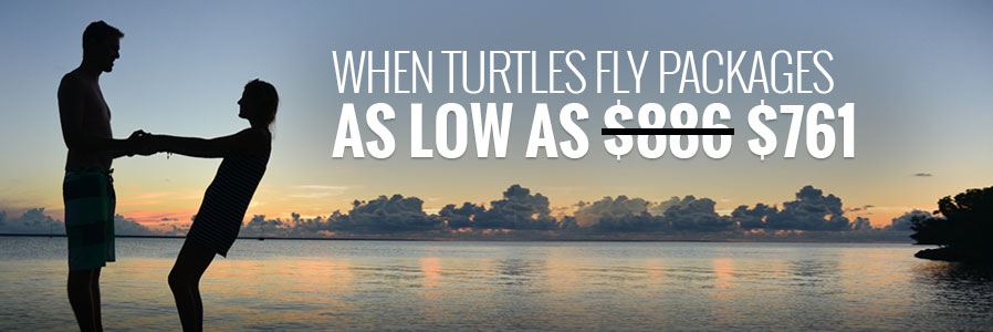 When Turtles Fly Package