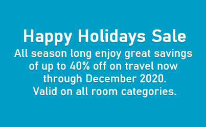 Happy Holidays Sale